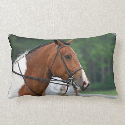 Paint Show Horse Pillow