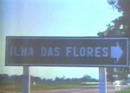 video - LA ISLA DE LAS FLORES