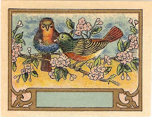bird label