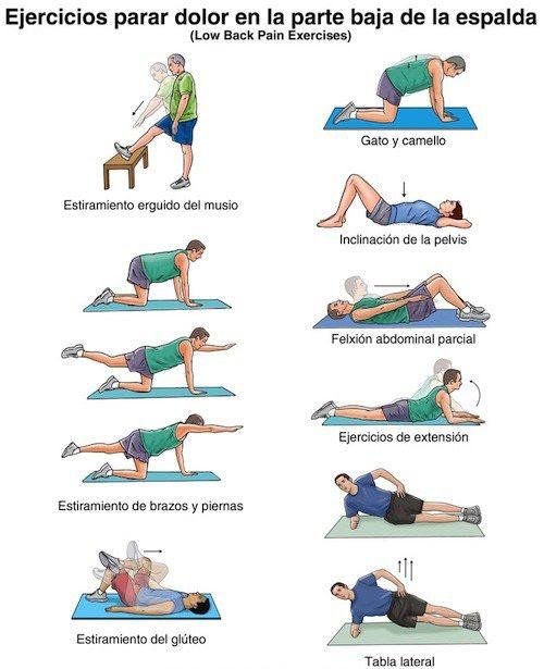 ejercicios dolor espalda