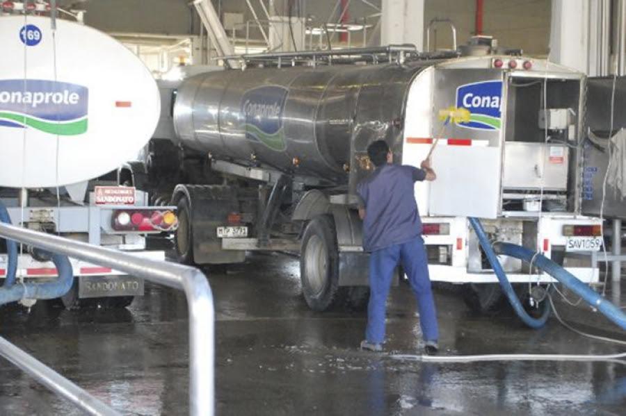 Ministro Murro confirmó espacio de diálogo y trabajadores de la industria láctea suspenden medida