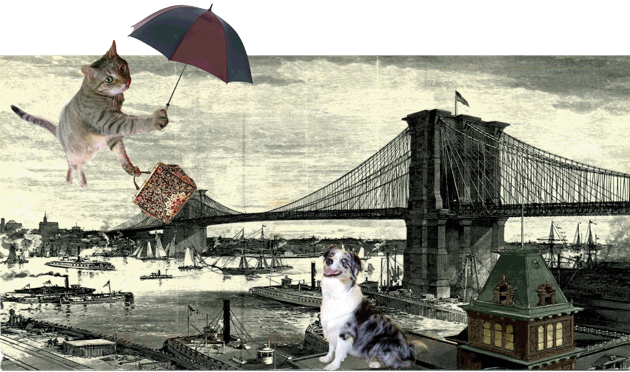 2010 Furry Poppins All Rights R*s*rv*d.