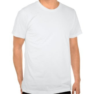 Petrified Forest Desert T Shirts