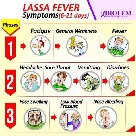 MUST READ!! 5 ways to avoid contacting Lassa fever   Post Nigeria
