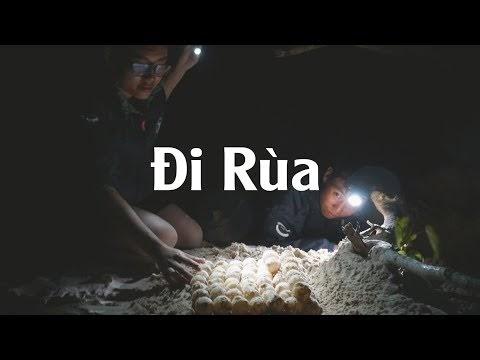 """Đội """"hộ sinh"""" rùa biển độc đáo nhất Việt Nam ở Côn Đảo"""