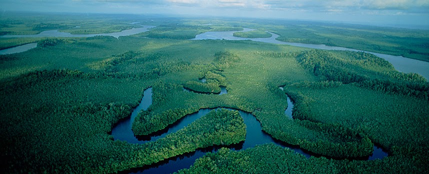 an introduction to the geography of the congo basin The congo- geography  bangui sande  141 introduction the congo , with a length of4374km, is the second longest  stanley travelled throughout the congo basin .