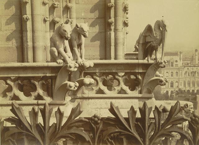 Notre Dame de Paris. Tower with Chimeras