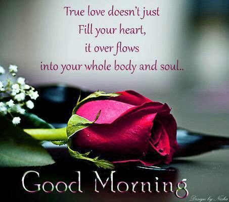 True Love Good Morning Quote Pictures Photos And Images For