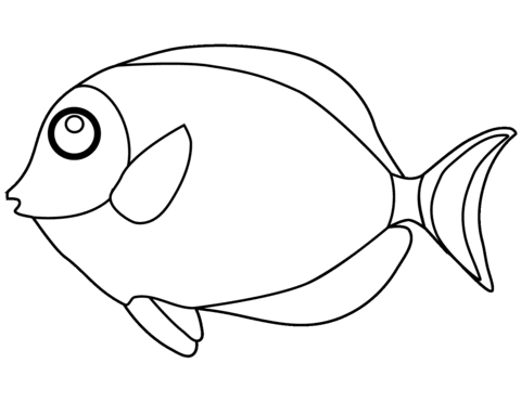 6100 Coloring Book Images Of Fish Free Images