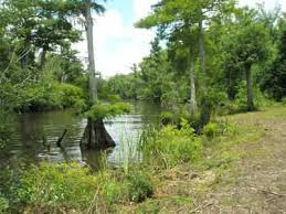 Fishing Camp «Becks Lake Fish Camp», reviews and photos, 2020 Becks Lake Rd, Cantonment, FL 32533, USA
