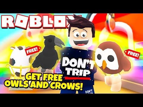 How To Get A Free Legendary Owl And Crow In Adopt Me New - roblox adopt me hack 2019 how to get money fast on adopt me