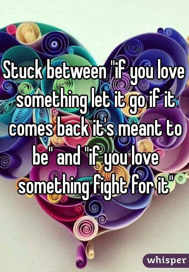 Stuck Between If You Love Something Let It Go If It Comes Back Its