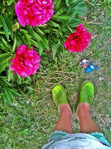 shoe per diem, peonies and bobbaloos