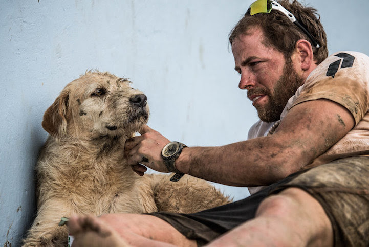 Stray_Dog_Arthur_Completed_430-mile_Race_7