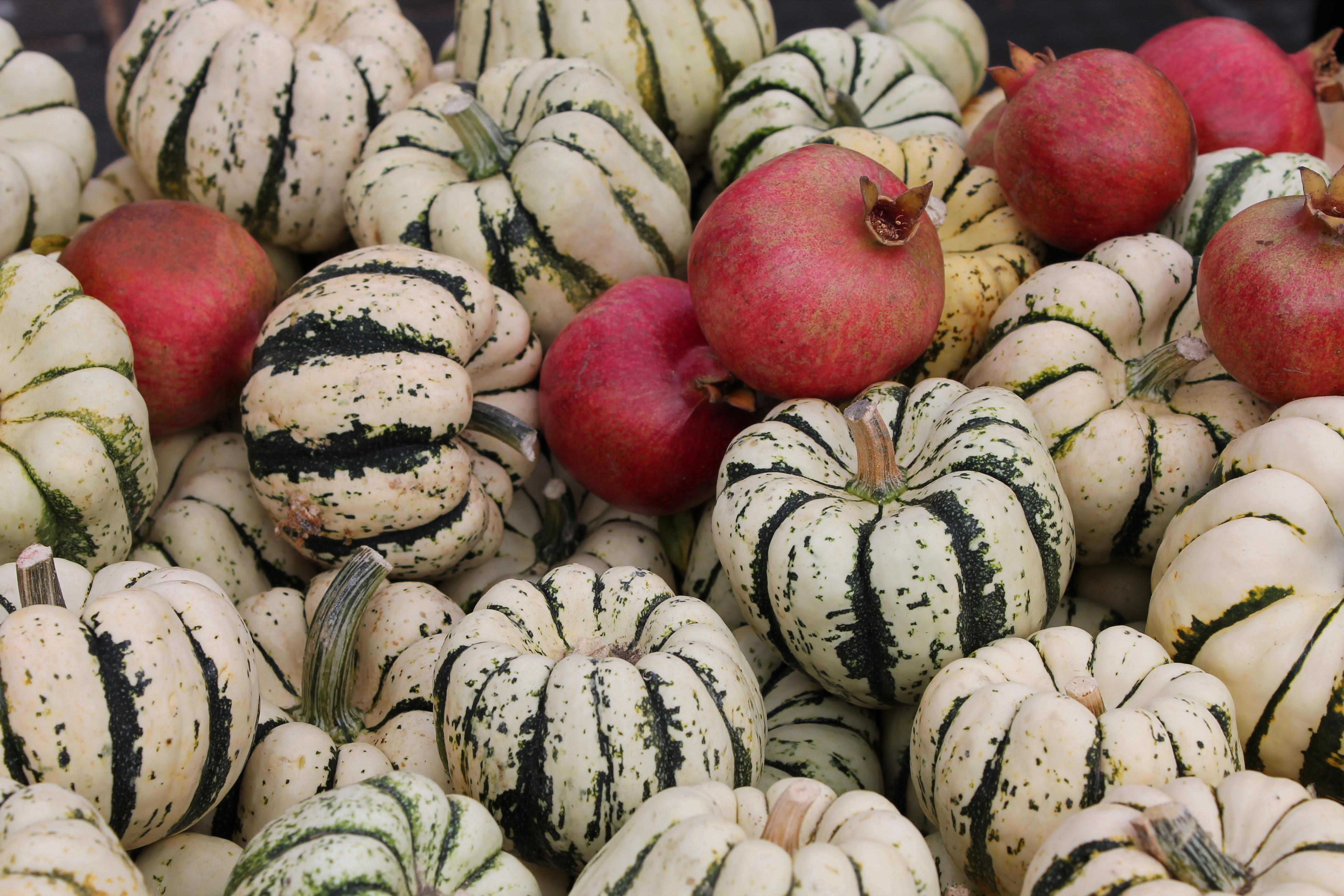 La Jolla Farmers Market - squash and pomegranates