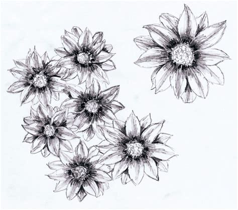 pencil drawings  flowers cool drawings pinterest