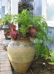 Shade Container