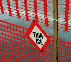 Orange border fencing