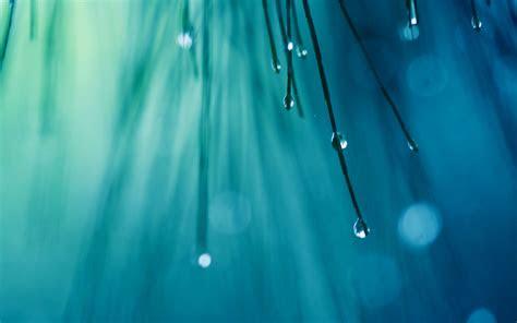 wallpaper rain drops  nature  wallpaper  iphone android mobile  desktop