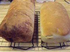 Fresh bread by Teckelcar