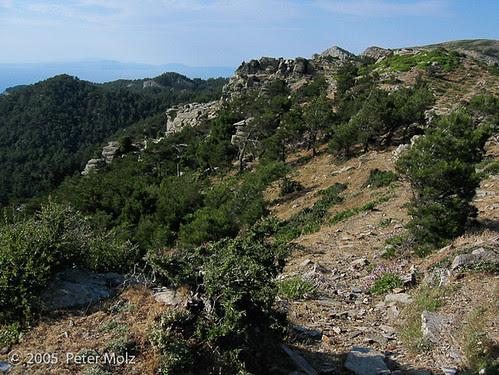 IMG_2773-a_20050610_Samos