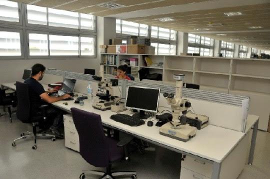 Sala de recerca