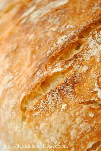 Pane Senza Impasto con Pasta Madre-Sourdough No Knead Bread