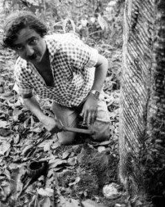 Chico Mendes, fotografiado en la Amazonía días antes e su asesinato.