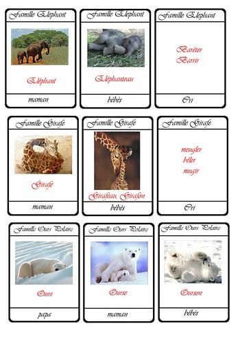 cartes 7 familles animaux11a