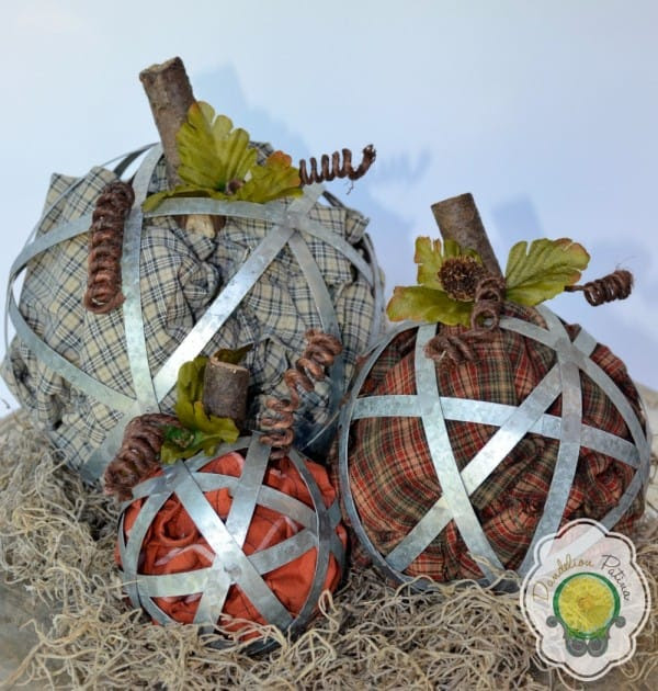 industrial-pumpkins-with-spanish-moss