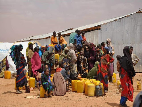 Somalis collect drinking water