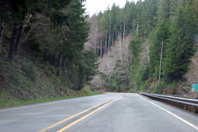 SR 113 north of Beaver Lake