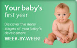 Quotes About First Year Of Baby 28 Quotes
