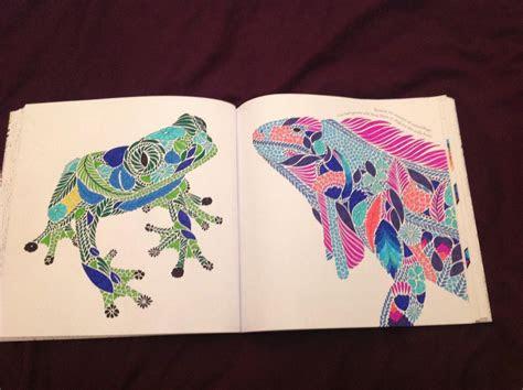 millie marottas tropical wonderland  colouring book