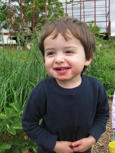 Will LOVES Berry Picking by Eve Fox, Garden of Eating blog, copyright 2011