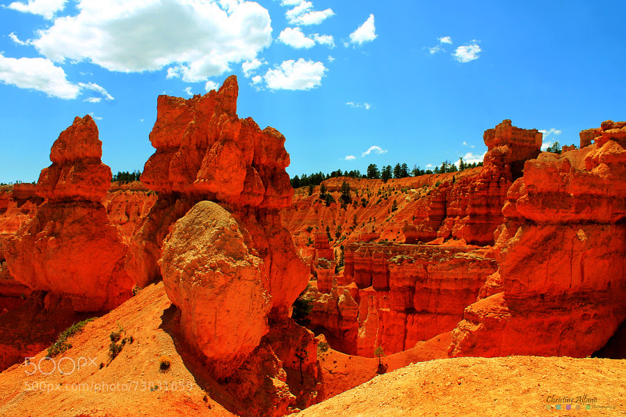 Photograph Red Rocks by Christine Alfano on 500px