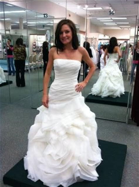 this might be it. DB Organza Fit and Flare Gown with Bias