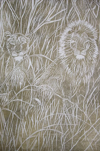 lions in grass