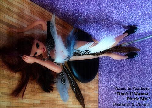 Venus in Feathers music video purple glitter 4 copy