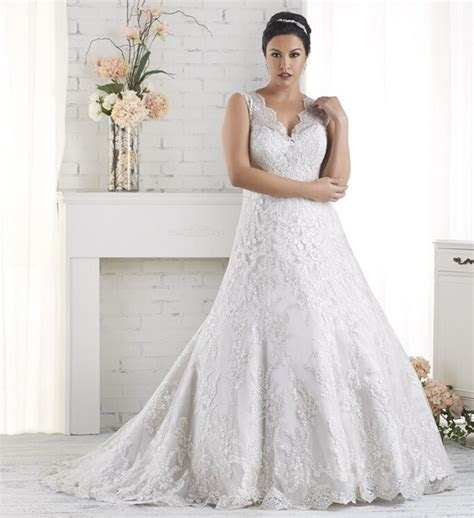 Elegant Tulle Romantic Cheap Plus Size Vintage Ball Gown
