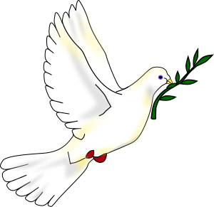 A white dove with an olive branch