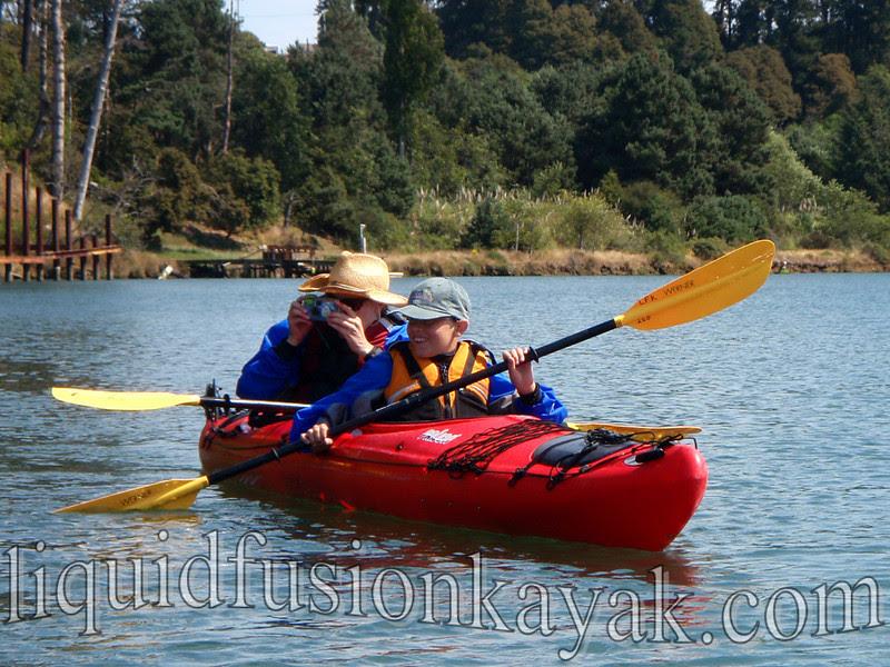 family kayak wildlife watching tour