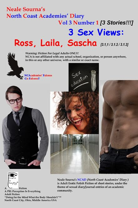 ebook cover NCAD 3.1_3 Sex Views: Ross, Laila, Sascha