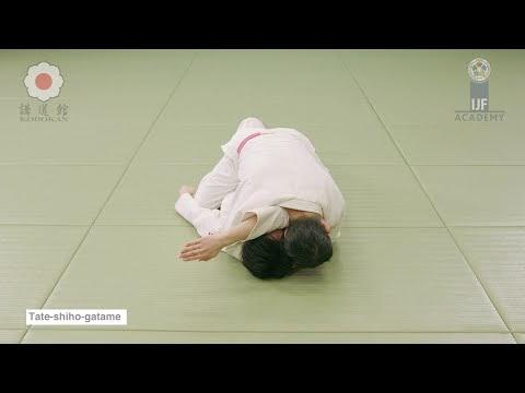 Tate-shiho-gatame | escapes