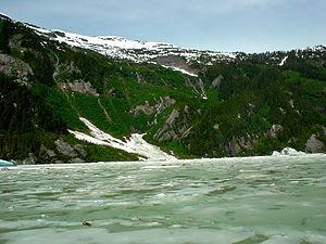 Ice the Stikine River.