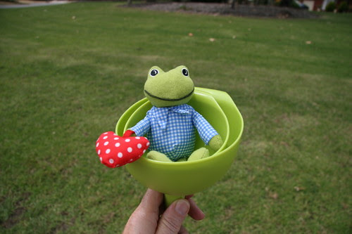 frog in a funnel