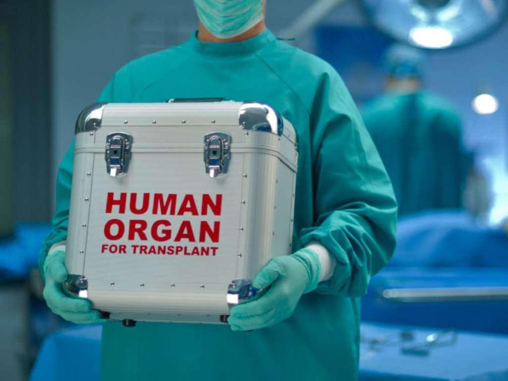 «Посмертное» донорство – это убийство