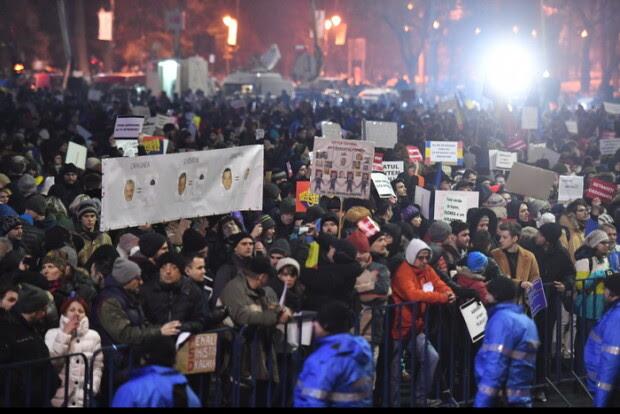 Image result for LA PROTESTE COPII IMPĂRTEAU FLORI