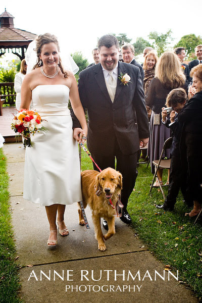 Dog Ring Bearer Recessional w/ Bride & Groom