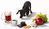 10 alimentos prohibidos para los perros